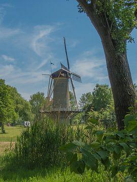 Schönes Niederländisch von JacQ