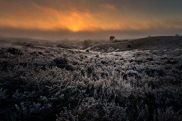 Duistere zonsopgang van