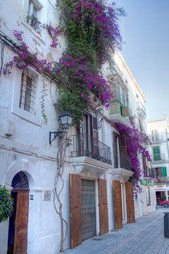 Ibiza van Wijbe Visser