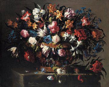 Petit panier de fleurs, Juan de Arellano sur