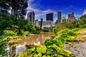 Central Park New York van