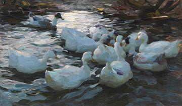 Elf Enten im Wasser, ALEXANDER KOESTER, Ca. 1915-1932 von Atelier Liesjes