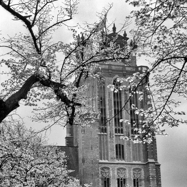 Grote Kerk Dordrecht (voorjaar april 1968) van Dordrecht van Vroeger