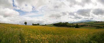 Heuvelland Panorama von peter reinders