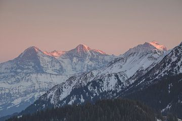 Sonnenuntergang Berner Alpen von Martin Steiner