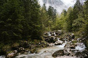 Waterval in de bergen van Beieren, Duitsland van Wianda Bongen