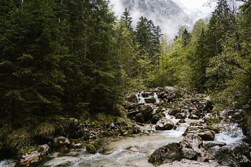 Wasserfall in den Bergen Bayerns, Deutschland von Wianda Bongen