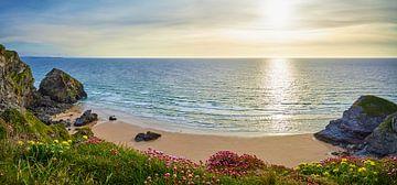 Cornish Horizont