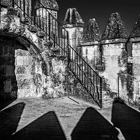Kantelen in zwart/wit van het kasteel van Cordoba, Spanje van Harrie Muis