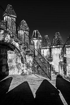 Kantelen in zwart/wit van het kasteel van Cordoba, Spanje sur