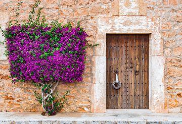 Idyllische Ansicht von mediterranen Haus Haustür mit schönen Bougainvillea Blumen von Alex Winter
