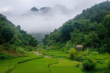 Bergdorp in Vietnam, Azië, Pu Luong. van Ellis Peeters
