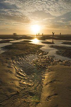 Ontmoeting  op het  strand van Waterpieper Fotografie