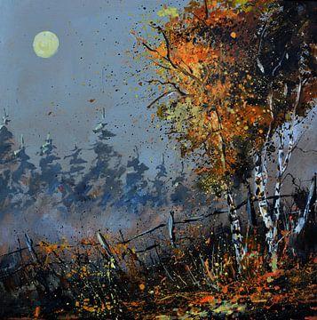 Clair de lune van pol ledent
