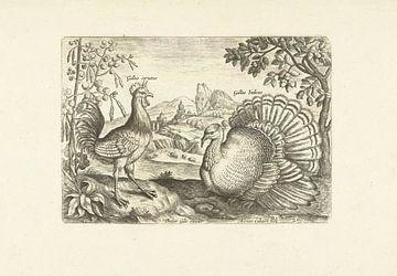 Twee hoenderen in een landschap van Adriaen Collaert, 1598 - 1618