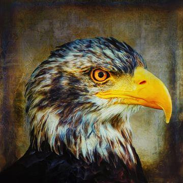 The Eagle van Angela Dölling
