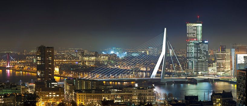 Panorama Erasmusbrug van Anton de Zeeuw
