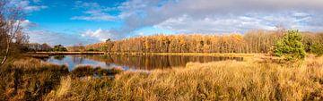 Veen meertje in Drenthe van Henk Hulshof