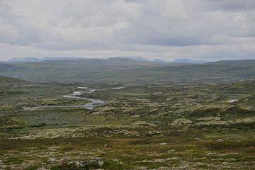 Hardangervidda, NOORWEGEN von Rudi Campschroer