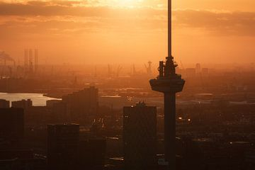Euromast en haven van Rotterdam van