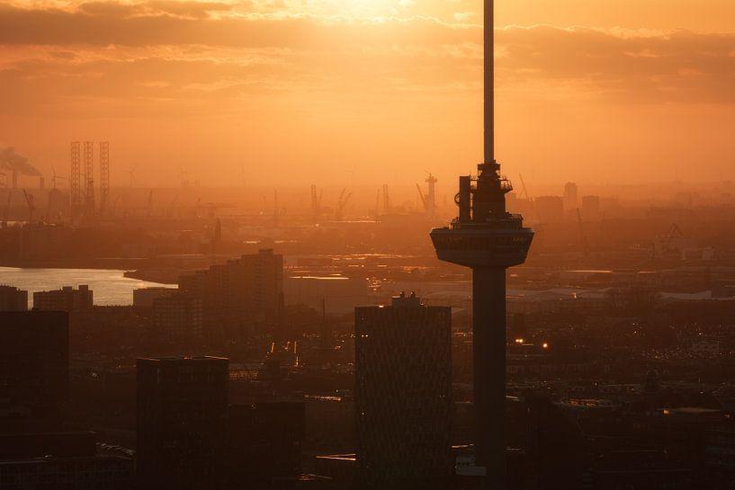 Euromast en haven van Rotterdam van Vincent Fennis