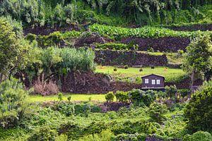 Tuinhuis op de heuvel