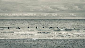 Surfers paradise sur