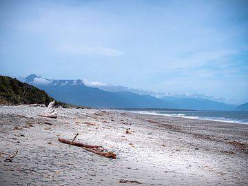Neuseeland - Westküste - Treibholz am Strand von Rik Pijnenburg