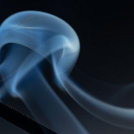 gehuld in rook van Hetwie van der Putten