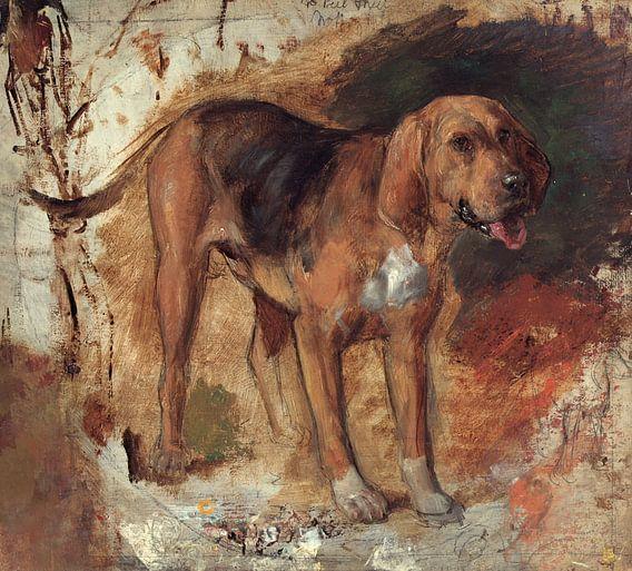 Holman Hunt - Study of a bloodhound