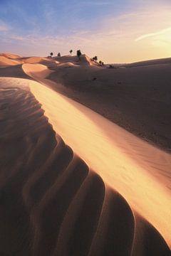 Dünen in der Sandwüste Omans