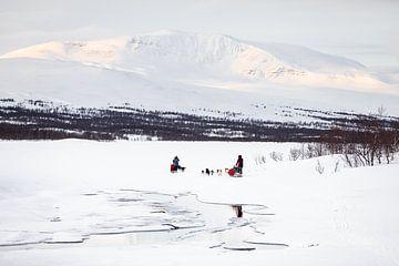 Hondensleeën in een besneeuwd winterlandschap