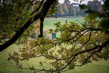 Blick auf eine Jagdhütte von Suzanne Schoepe