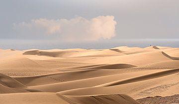 0085 Endless dunes van Adrien Hendrickx