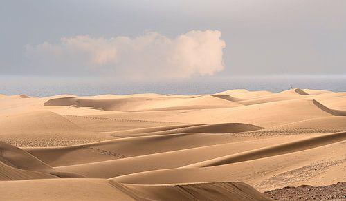 0085 Endless dunes