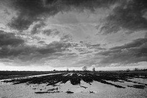 Akker in de polder  van