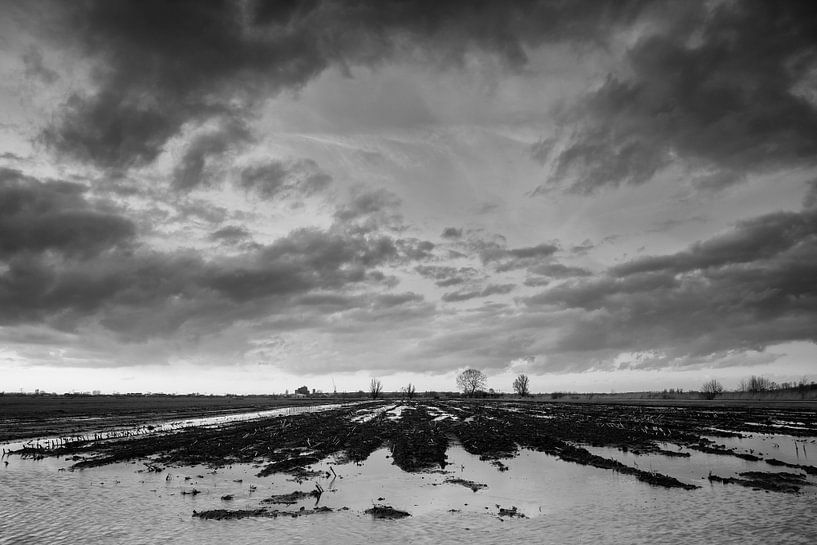 Akker in de polder  van Frans Batenburg