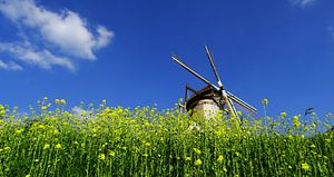 Windmolen tegen blauwe lucht van