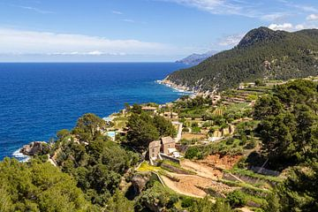 Kustgedeelte in het noorden van Mallorca van Reiner Conrad