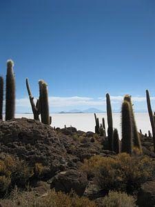 Zoutvlakte van Uyuni in Bolivia