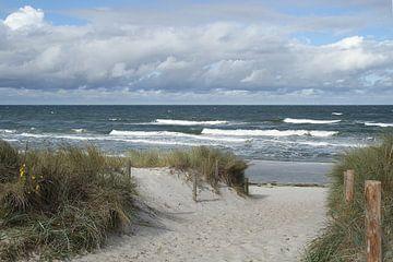 Am Strand in Mecklenburg - Vorpommern von Anja Bagunk