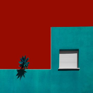 Eine spanische Dachgarten, Inge Schuster von 1x
