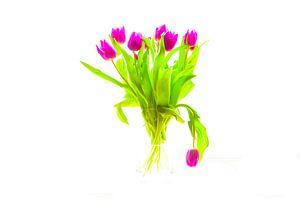 Paarse tulpen van Willem Verhagen