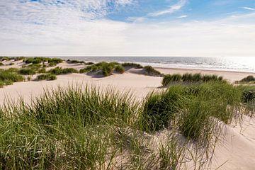 Hollandse kust met duinen en zee van Evelien Oerlemans