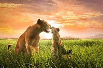 Löwin mit Jungtier von Arjen Roos