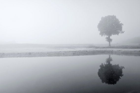Reflection van Ruud van Ravenswaaij