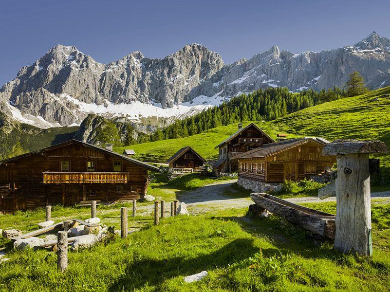Alpensommer V von Rainer Mirau
