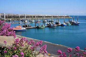 Boten in de sfeervolle haven van Saint Quay Portrieux Bretagne van