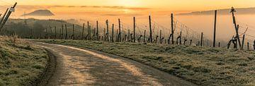 Sonnenaufgang über dem nebligen Ahrtal von Heinz Grates