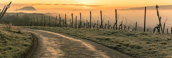 Sunrise over the misty Ahr valley van Heinz Grates